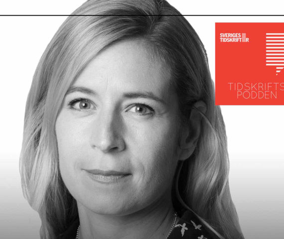 Karin Pettersson, Schibsted