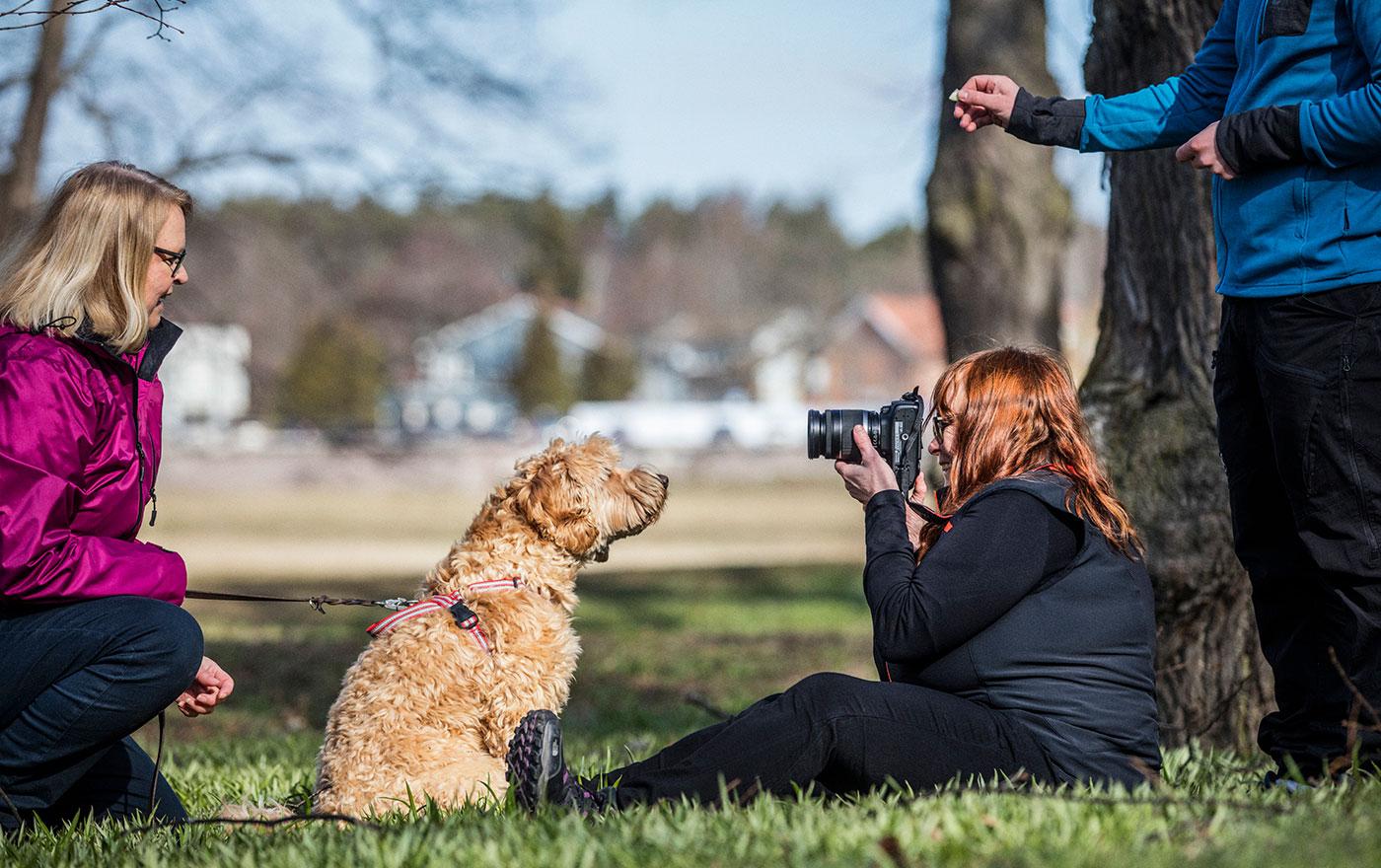 Fotograf fotar hund i en park