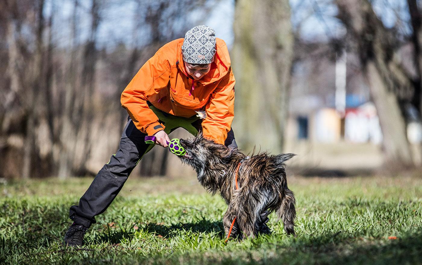 Hund och hundägare i en park